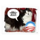 Barack Obama White-House Pet