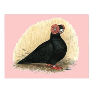 Barb:  Standard Black Postcard