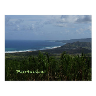 Barbados Island View Photo Postcard