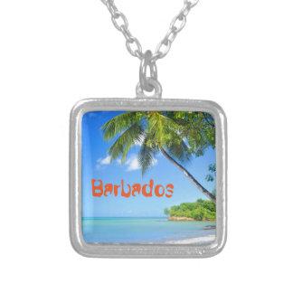 Barbados Silver Plated Necklace