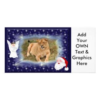 Barbary Lion-Nap-c-21 copy Photo Cards