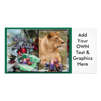 Barbary Lion-Nap-c-51 copy Personalized Photo Card