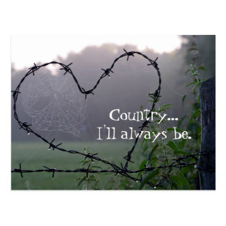 Barbed Wire Country Heart Postcard