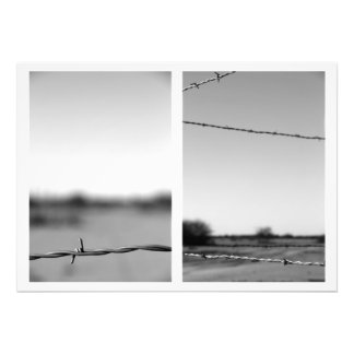 Barbed Wire Diptych Photo Art