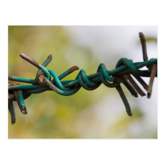 barbed wire postcard
