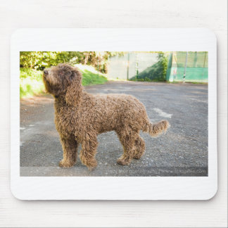 Barbet Dog Mouse Pad