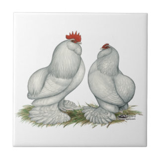 Barbu d'Everberg Chickens Tile