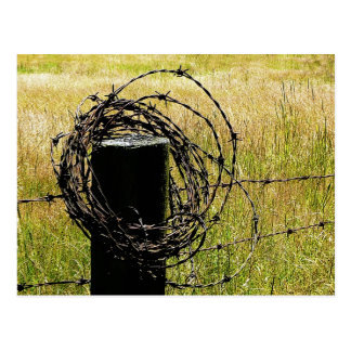 Barbwire Country Postcard