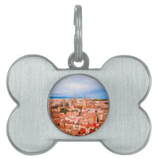 Barcelona Pet Tag
