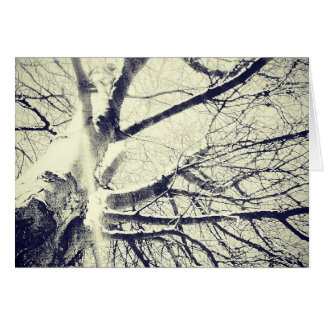 Bare black and white tree greeting card