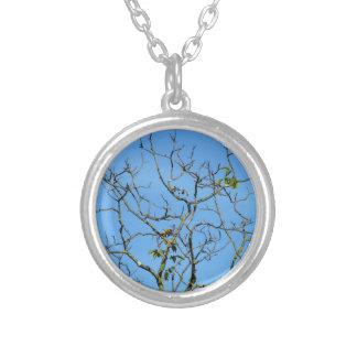 Bare chestnut tree in a sunny day silver plated necklace