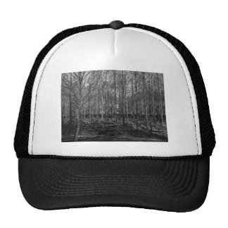 bare forestry trucker hat