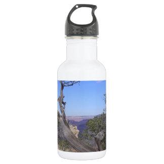 Bare Tree Grand Canyon