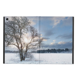 Bare tree in a snow field with early sunrise iPad air case