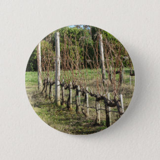 Bare vineyard field in winter . Tuscany, Italy 2 Inch Round Button