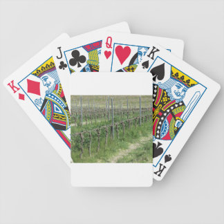 Bare vineyard field in winter . Tuscany, Italy Bicycle Playing Cards