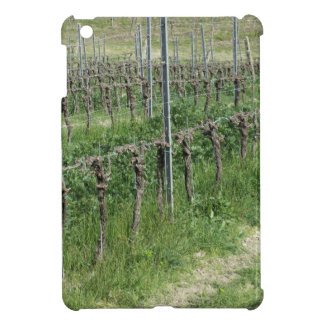 Bare vineyard field in winter . Tuscany, Italy Cover For The iPad Mini