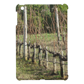 Bare vineyard field in winter . Tuscany, Italy iPad Mini Cover
