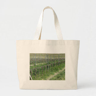 Bare vineyard field in winter . Tuscany, Italy Large Tote Bag