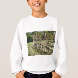 Bare vineyard field in winter . Tuscany, Italy Sweatshirt