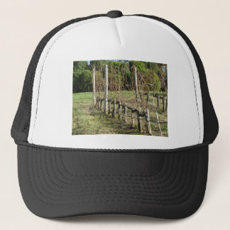 Bare vineyard field in winter . Tuscany, Italy Trucker Hat