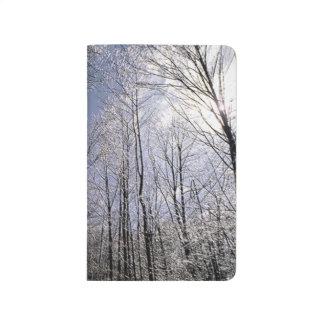 Bare Winter Branches Against Sky Seasonal Scenic Journal