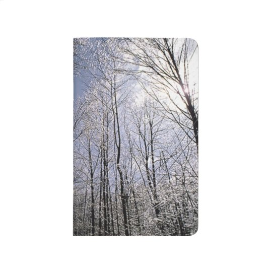 Bare Winter Branches Against Sky Seasonal Scenic Journal