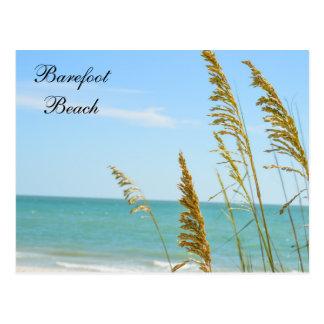 Barefoot Beach postcard