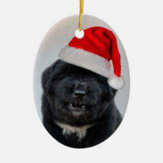 Bark Humbug Christmas Ornament