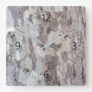 Bark of plane tree square wall clock