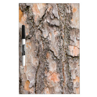 Bark of Scotch pine tree as background Dry Erase Board