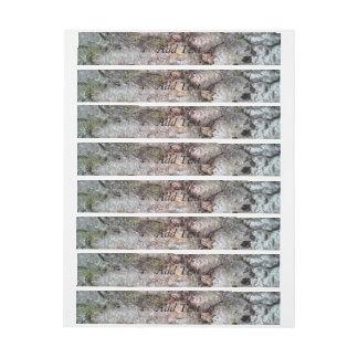 bark of Scots pine Wraparound Address Label
