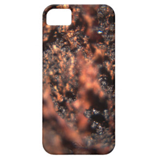 Bark Texture iPhone SE + iPhone 5/5s Case