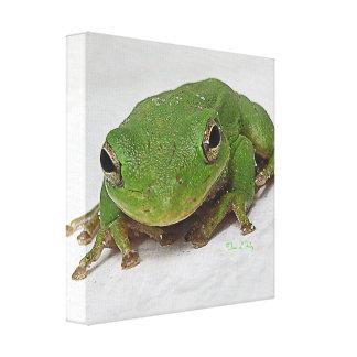 Barking Frog Canvas Print