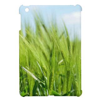 barley-897 iPad mini cover