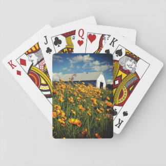 Barn and wildflowers playing cards