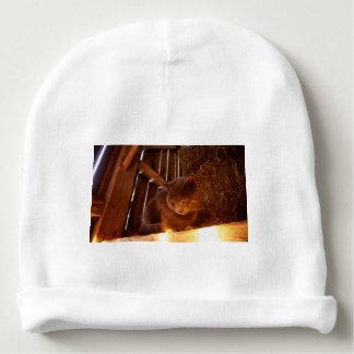 Barn Cat Baby Beanie