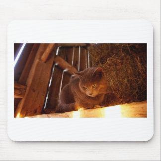 Barn Cat Mouse Pad