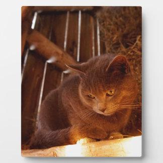 Barn Cat Plaque