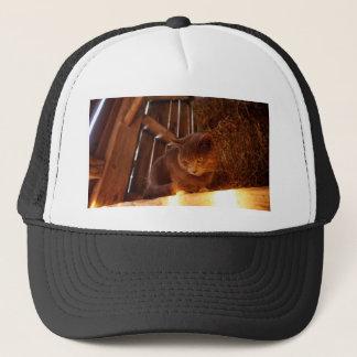 Barn Cat Trucker Hat
