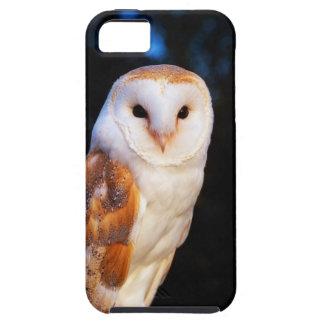 Barn Owl 2 iPhone 5 Cases