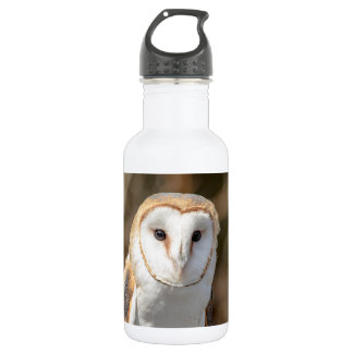 Barn Owl 532 Ml Water Bottle