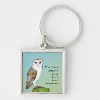 Barn Owl Bird Watercolor Painting Wildlife Artwork Silver-Colored Square Keychain