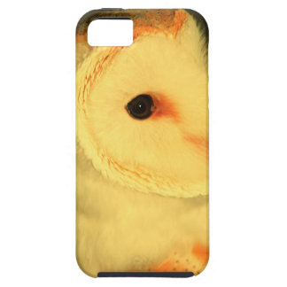 Barn owl case for the iPhone 5