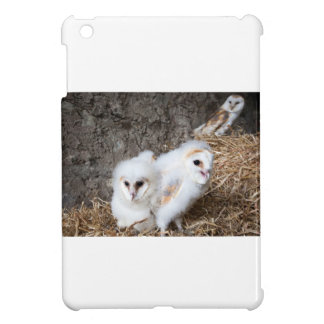 Barn Owl Chicks In A Nest Cover For The iPad Mini