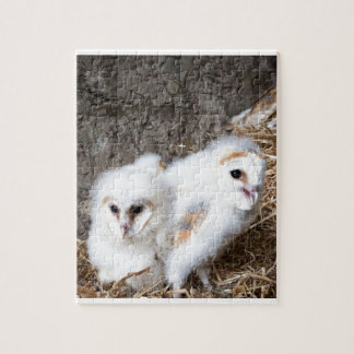 Barn Owl Chicks In A Nest Jigsaw Puzzle