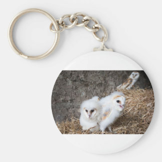 Barn Owl Chicks In A Nest Keychain
