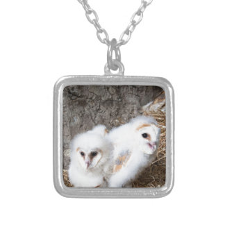 Barn Owl Chicks In A Nest Silver Plated Necklace