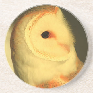 Barn owl drink coasters