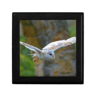 Barn Owl Flying Gift Box